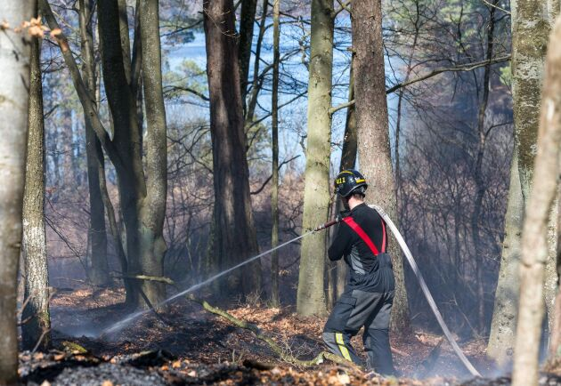 En av de skogsbränder som härjade under måndagen, i detta fall i trakterna av Bökestadsnäs vid sjön Raslången i Kristianstad kommun.