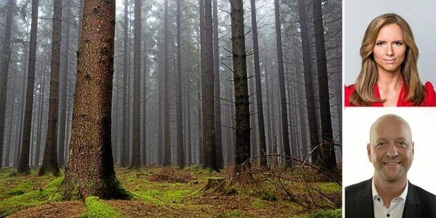 KD vet hur viktig skogen är för klimatet