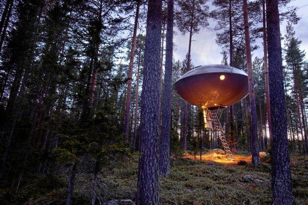 """Sugen på att klättra upp i """"The UFO""""? En häftig upplevelse på Treehotel i norr!"""