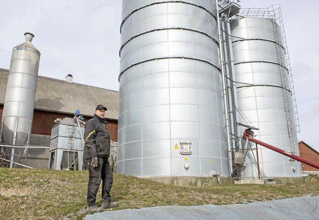 Spannmålen i de båda gastäta silosarna behöver inte torkas och gården sparar mycket energi på denna investering.