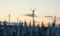 """""""Vindkraft är inte den nya gröna vågen"""""""