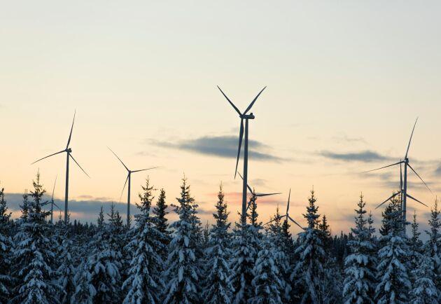 Är denna industri förnybar, hållbar, klimatvänlig och grön?, frågar sig debattörerna.