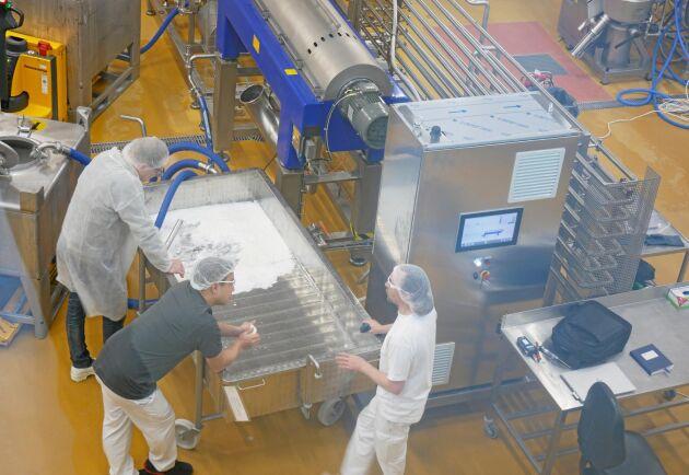 Tre anställda forskar på en mozzarella.