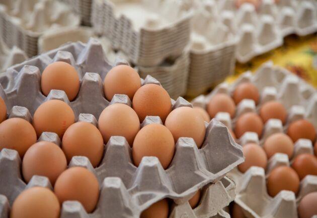 Även i Sverige har de giftiga äggen sålts, men det svenska arbetet med att spåra ägg som innehåller rester av giftigt bekämpningsmedel är över.