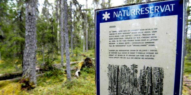 """""""Ambitioner för naturvård försvårar för ett uthålligt samhälle"""""""