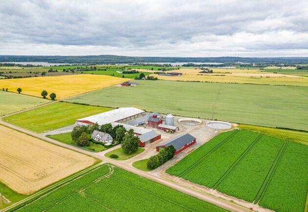 """""""Man tar över en pågående verksamhet med mark, byggnader, anställda och de små grisarna som växer i detta nu. Det är inte så vanligt att en så rationell anläggning säljs""""' säger Johan Herrlin från Ludvig & Co om verksamheten på Sturedal."""