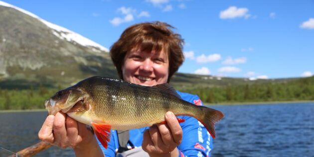 Semester på riktigt! Testa sommarfiske i Skandinaviens alper
