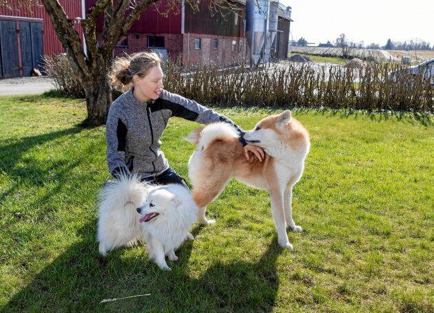 Johanna med parets hundar, den japanske spetsen Caspar och akitan Ludde, som trivs med livet på gården vid Ållebergs fot.