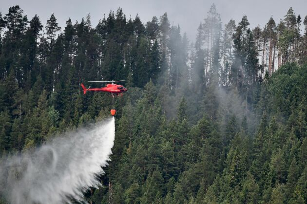 En helikopter samlar vatten under en skogsbrand i Jämtland sommaren 2018.