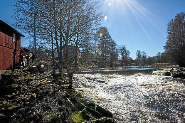 Västsvenska vattenkraftsägare som inte sökt tillstånd på grund av i deras tycke orimliga kostnader får nu respit när länsstyrelsen har lovat att vänta in ett regeringsbeslut om förenklade regler.