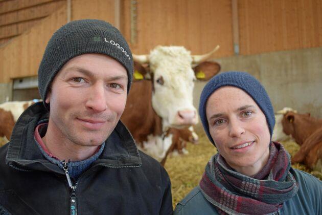 Efter att Järna Mejeri sagt upp avtalet med Ullberga Gård planerar lantbrukarna Job Michielsen och Cecile 's Jongers att starta egen mejeriverksamhet.
