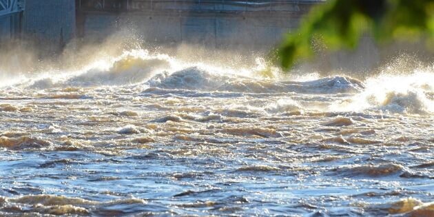 Länsstyrelsen krävde omedelbart stopp för vattenkraft