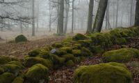 2,7 kilometer stenmurar försvann