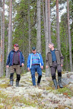 Per-Arne Oscarsson, Bengt Halvarsson och Ola Mattson oroas av Skogsstyrelsens klassning och registrering av nyckelbiotoper.