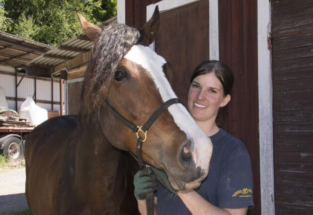 Företaget vilar tryggt på flera ben där starthästar som kallblodet BW Mimmi är en del, rehabhästar en andra och unghästar den tredje.