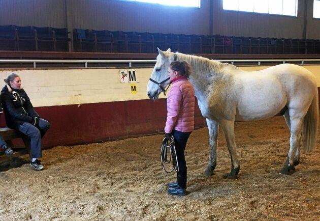 Veterinären undersökte i förra veckan alla hästar med den neurologiska formen av virussjukdomen.