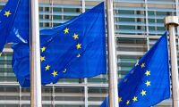 Så reagerar skogsbranschen på EU:s biobesked