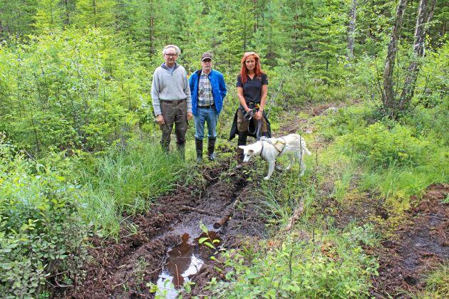 Skogsägarna Cecilia Alexanderson och Erik Karlsson och Gunnar Pettersson är bekymrade över cross- och fyrhjulsåkning i deras marker.