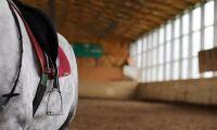 Nytt hästcentrum vid Axevalla