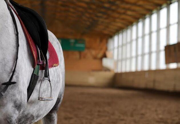 Västra Götalandsregionen ska koncentrera alla hästbildningar på naturbruksskolorna till Axevalla. Arkivbild.