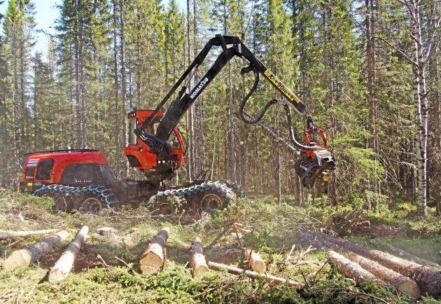 Så långt ser orderläget bra ut för skogsbolagen.