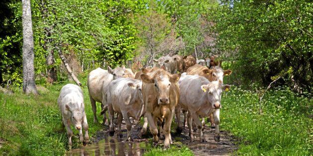 Nya säljargumentet för lantbrukare