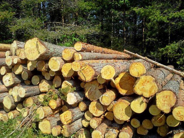 Snart kan utredningen om äganderätten i skogen starta, enligt en av förhandlarna.
