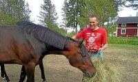 Utan hästar hålls markerna inte öppna