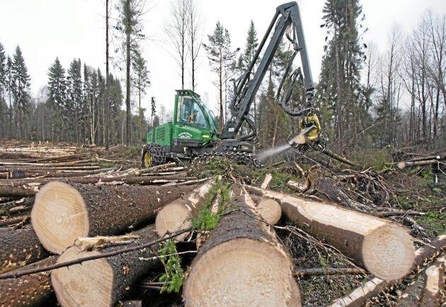Åland drabbades hårt av stormen. Nu tvingas man låna maskiner från Sverige och Finland för att kunna ta hand om all skog som blåst ner.