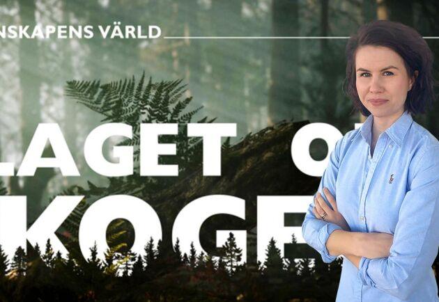 SVTs porträtt av skogsbruket är långt ifrån opartiskt, skriver Ester Hertegård.