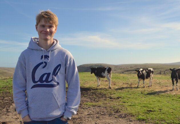 Nu drömmer Fredrik Åkerman om att sälja algen till djurbönder globalt och har, med sina vänner, startat företaget Volta Greentech som tagit plats på KTH:s innovationshubb.