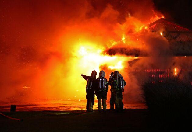 Flera kor har blivit innebrända i en brand på en gård vid Vreta utbildningscentrum utanför Linköping.