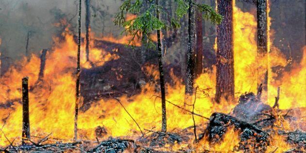 Elddop för rustad brandberedskap