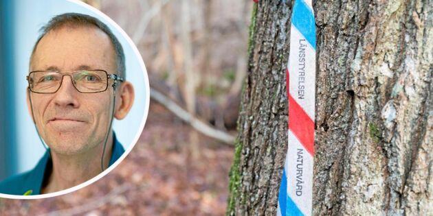 Sveaskog nära målet för naturvårdshänsyn