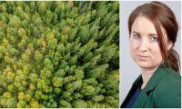 """""""EU ska inte besluta om svensk skog"""""""