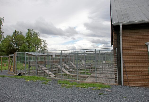 I kenneln tar ForsWards emot hundar som inackorderas när hundägaren exempelvis är på semester.