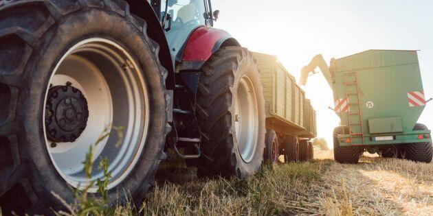 Stora skördar och ökade produktionsvärden 2019