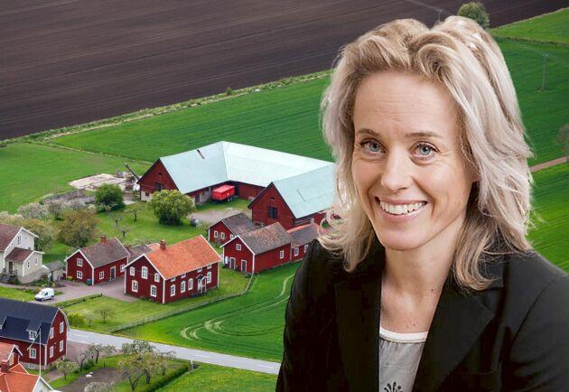 Jessica Wieslander, jurist, Berggren & Stoltz