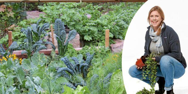 Ny trädgårdsprofil på Land: Nu gräver vi djupare med Bella