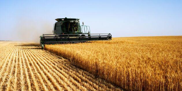 Jordbruket i Europa ökar långsammare