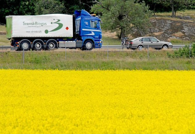 Bland förslagen från Fossilfritt Sverige finns åtgärder för ökad användning av biodrivmedel och minskad användning av vägar.
