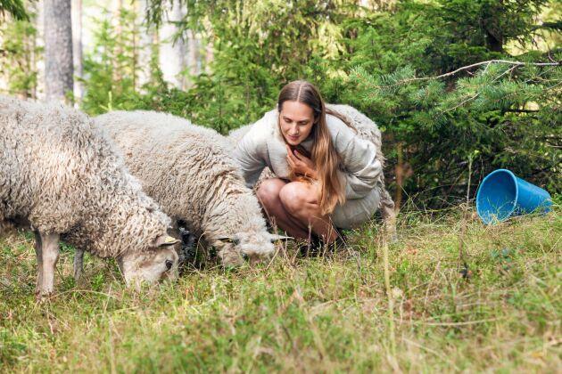 Lisa på besök hos grannens får. Hon har nära kontakt med alla fårbönder hon köper ull från