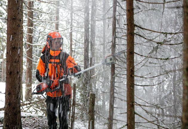 Per Jonasson har skog i Bergslagen och Småland.