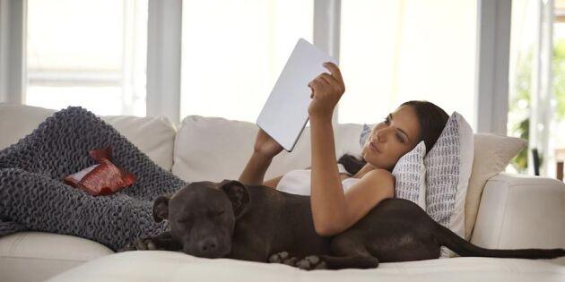 Din hund älskar dig – här är 5 säkra tecken