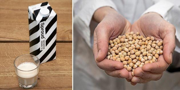 Vegansk ärtdryck ny konkurrent till mjölken