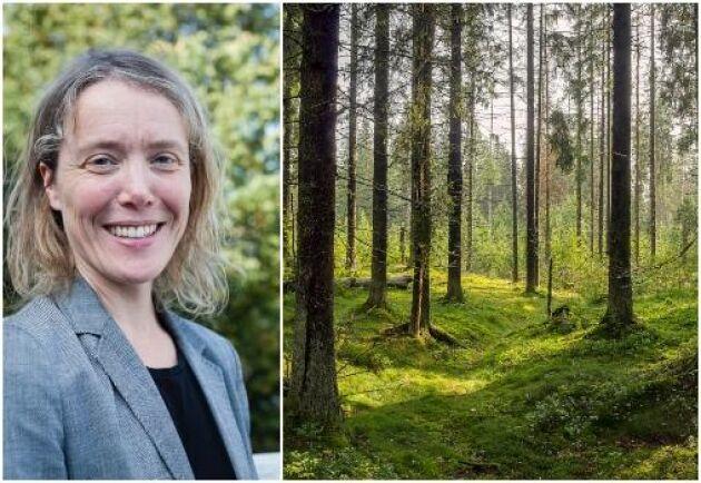 Annika Nordin, professor vid SLU.