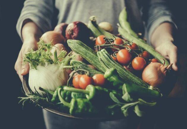 Lite av förra årets testodling av grönsaker.