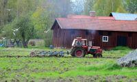 Fler tillfälliga jobb inom jordbruket