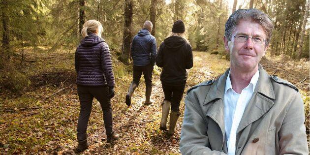 Fler behöver upptäcka skogarna på egen hand