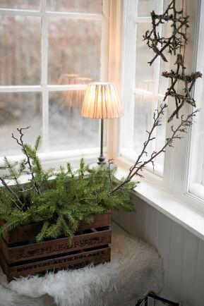 Granris och stjärnor gjorda av kvistar är fina i fönstret.